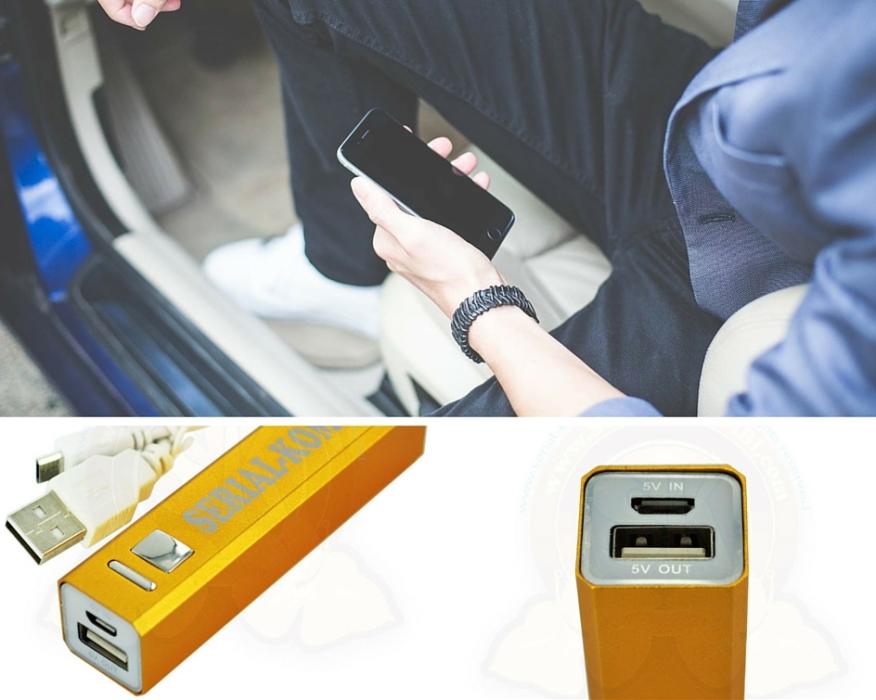 Batterie portable mobile